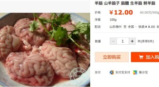 brains1-640x353