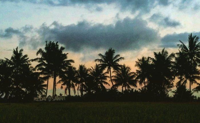 My Bali Life