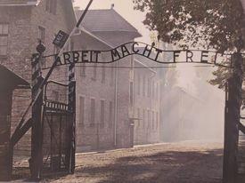 """Auschwitz-Birkenau """"Arbeit Macht Frei"""" – NeverForget"""